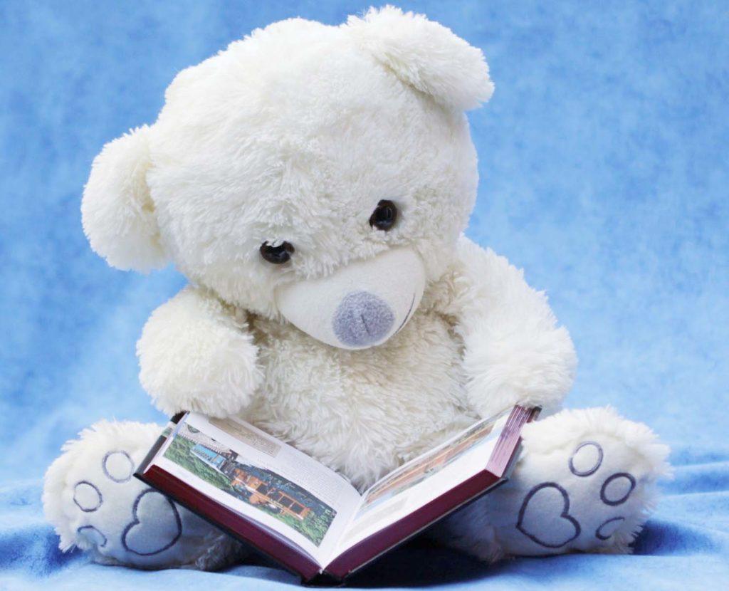 a teddy bear reading book